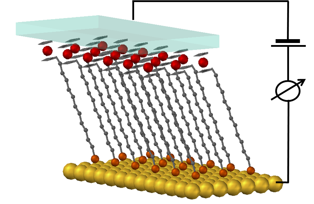Charge transport across organic layers